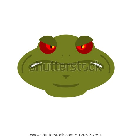 Frog angry emoji. toad Avatar evil amphibious. Emotion Reptile F Stock photo © popaukropa