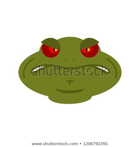 emoticon · boos · Geel · witte · oog · zwarte - stockfoto © popaukropa