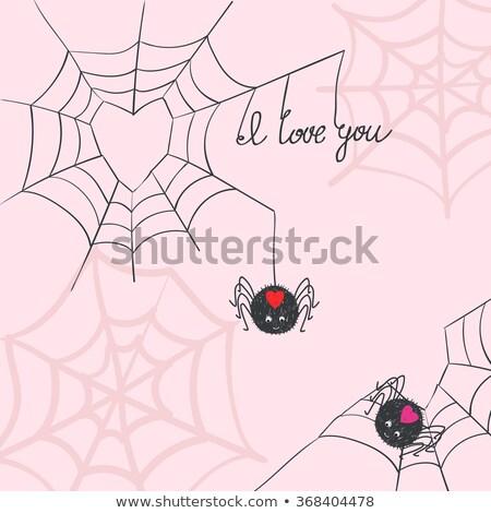 Amore spider illustrazione segno natura iscritto Foto d'archivio © colematt