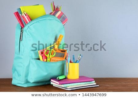 Verschillend kleurrijk schrijfbehoeften student terug naar school kantoor Stockfoto © furmanphoto