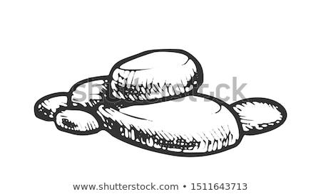 pedra · rocha · decorativo · elemento · monocromático · vetor - foto stock © pikepicture