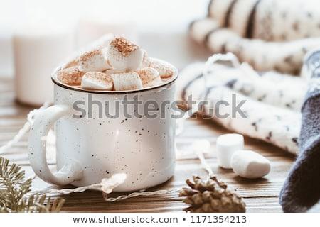 Csésze forró csokoládé kezek gyapjú kesztyű tart Stock fotó © Alex9500