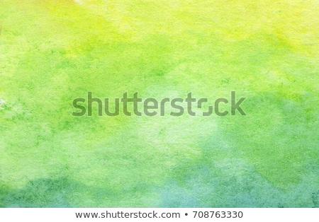 Abstract groene aquarel vlek textuur ontwerp Stockfoto © SArts