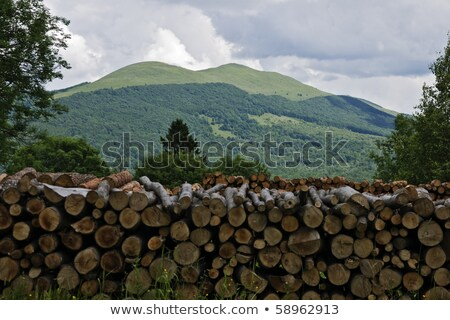 Beautifool Green Mountains Foto stock © pixelman