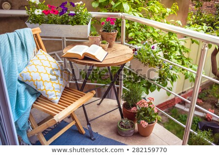 wooden chairs and tables in the resort stock photo © lypnyk2