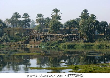 nile scenery in egypt at evening time stock photo © prill