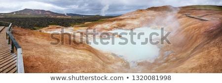 landschap · IJsland · Rood · vuil · stoom · heet · water - stockfoto © hofmeester