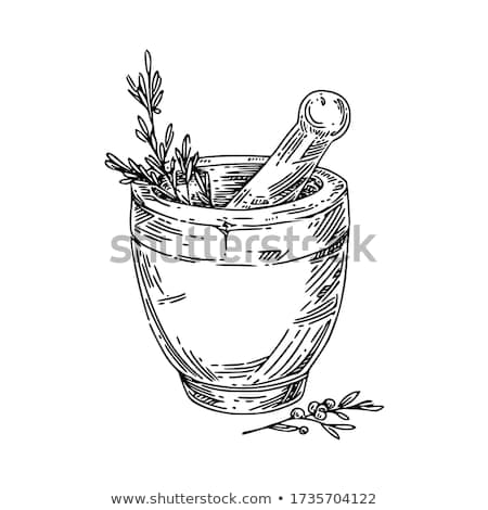 Mortar and pestle Stock photo © elenaphoto