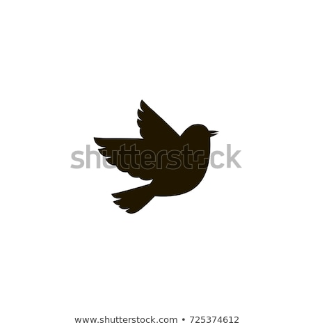 follow bird icons stock photo © arenacreative
