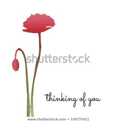 Pense carte coquelicots difficile design pavot Photo stock © fenton