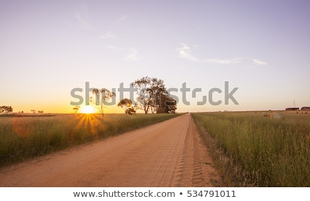 country road in australia stock photo © dirkr