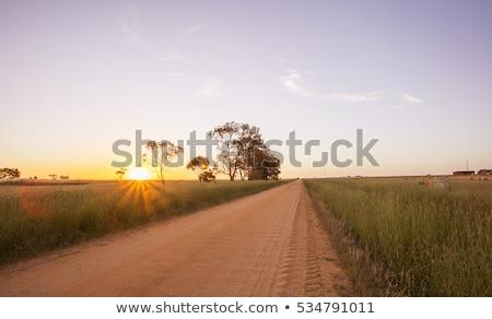 Estrada rural Austrália placa sinalizadora aviso queensland floresta Foto stock © dirkr