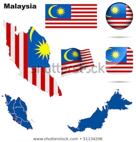 Pokaż banderą przycisk Malezja wektora obraz Zdjęcia stock © Istanbul2009