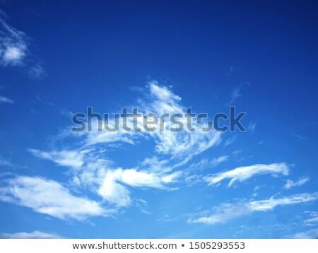 fenomeen · hemel · scène · eenzaam · bomen - stockfoto © pictureguy