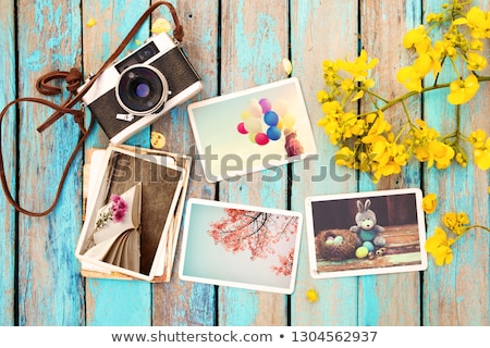 old camera and flowers stock photo © srnr