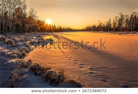 Dawn winter mooie berg landschap bergen Stockfoto © Kotenko