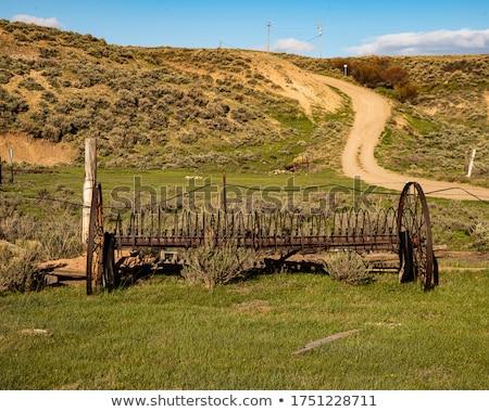 сено грабли лошади металл области ржавчины Сток-фото © Dar1930
