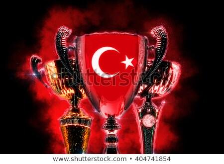 Trófea csésze mintázott zászló Törökország digitális illusztráció Stock fotó © Kirill_M