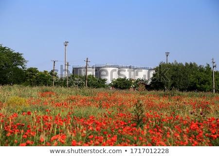 fabrika · endüstriyel · binalar · bitki · sanayi · enerji - stok fotoğraf © bluering