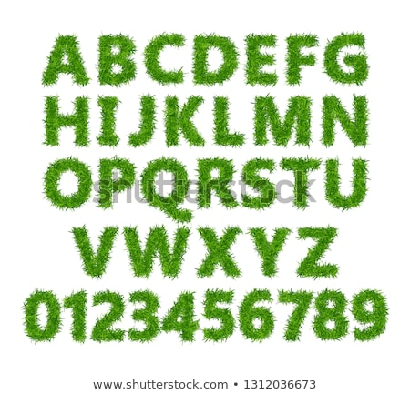Font design for numbers with grass texture Stock photo © bluering