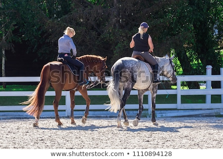 Two girls on a horseback Stock photo © IS2