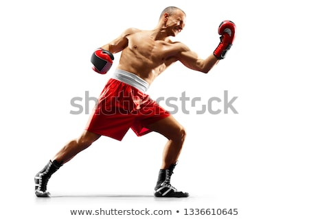 güzel · boksör · köpek · yavrusu · genç · yalıtılmış · beyaz - stok fotoğraf © hsfelix