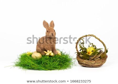 adorable white rabbit on nest in basket and chicken eggs on white  Stock photo © LightFieldStudios