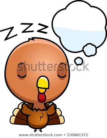 Cartoon Baby Turkey Dreaming Stock photo © cthoman