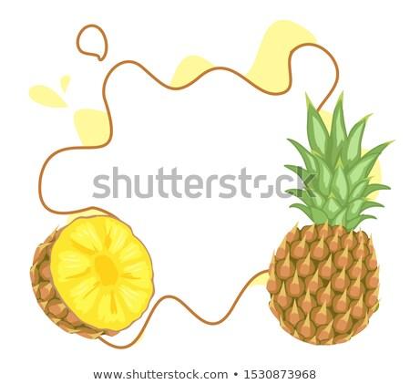 Ananas tropikalnych roślin jadalny owoców plakat Zdjęcia stock © robuart