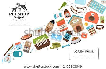 leash vector flat icon stock photo © smoki