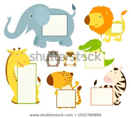 Gepárd jegyzet illusztráció textúra háttér keret Stock fotó © bluering