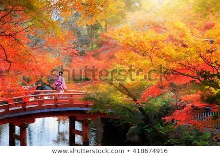 hojas · de · otoño · techo · metal · textura · edificio · naturaleza - foto stock © craig