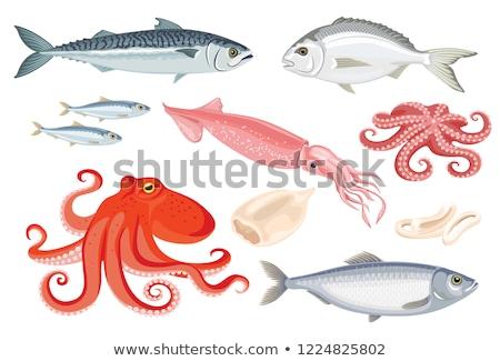 魚 アイコン 孤立した 白 健康 新鮮な ストックフォト © MarySan