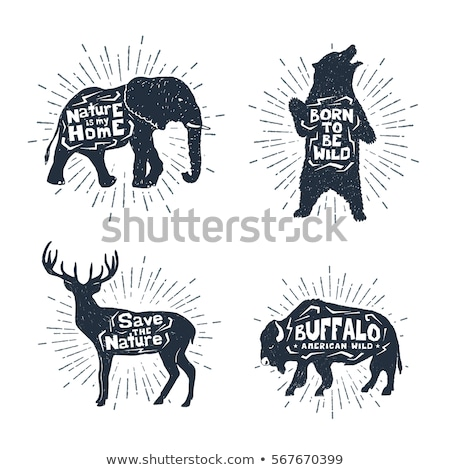 Vintage dessinés à la main cerfs emblème buck silhouette Photo stock © Genestro