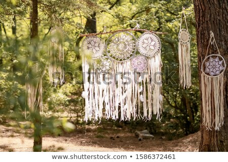 Close up dream catchers hanging on a tree in the forest Stock photo © ElenaBatkova