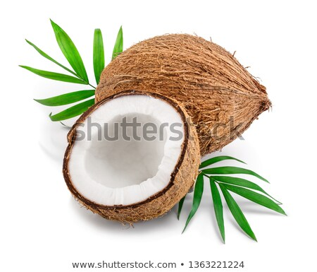 Sliced coconut and palm leaves Stock photo © furmanphoto