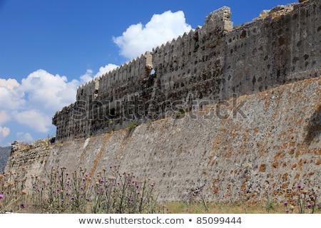 Ruine venetian castel sat floare constructii Imagine de stoc © wjarek