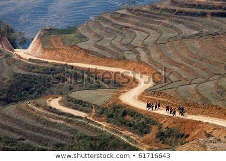 Viajero caminata curva camino de tierra campo de arroz mujer Foto stock © vichie81