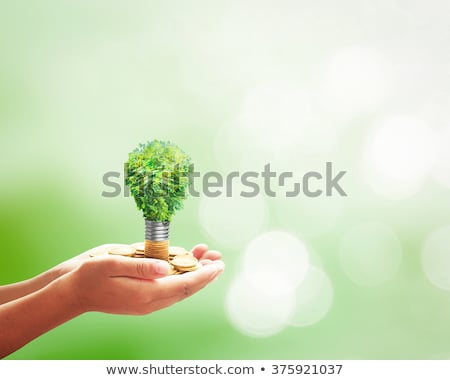 Businessman with eco lamp Stock photo © vlad_star