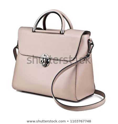 Beautiful young woman with a handbag. Isolated stock photo © acidgrey