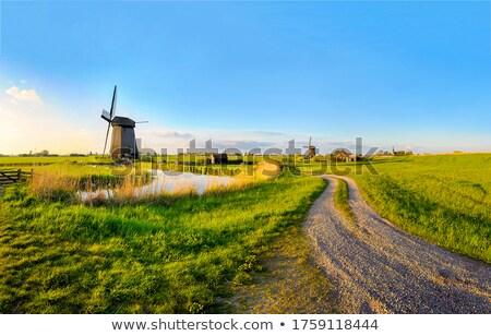 Old windmill on horizon. Stock photo © borysshevchuk