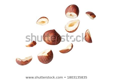 Hazel nut Stock photo © Kurhan