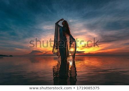 hegedűművész · nők · naplemente · illusztráció · természet · jókedv - stock fotó © adrenalina