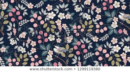 vadvirágok · nyár · kék · százszorszép · növény · fül - stock fotó © kostins