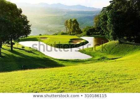 Lago golfe campo de golfe lata prática favorito Foto stock © jarp17