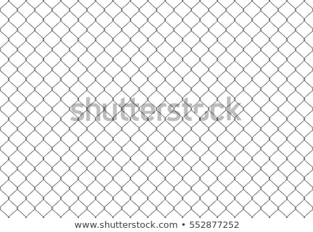 Abstract wire mesh background Stock photo © dezign56