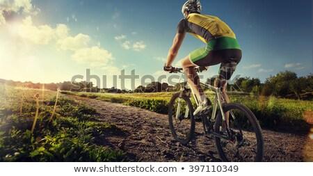 kobieta · rowerzysta · jazda · konna · rowerów · górskich · drogowego - zdjęcia stock © fisher