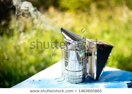 fumar · casa · grama · laranja · caixa - foto stock © jordanrusev