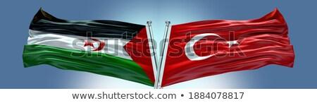 Törökország western Szahara zászlók puzzle izolált Stock fotó © Istanbul2009