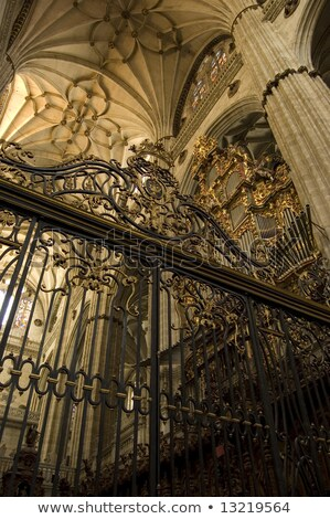 Central nave Cathedral Salamanca. Spain Stock photo © Photooiasson